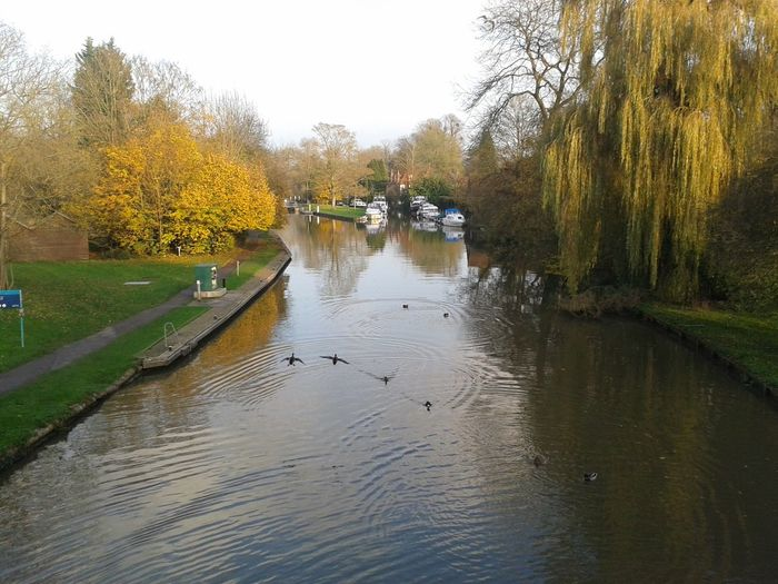 the The River Thames at Hurley  bridge Today Razorspics