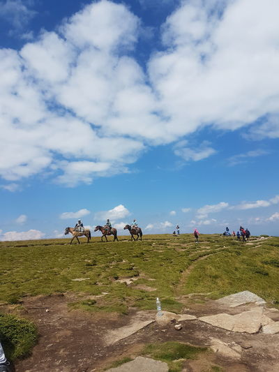 Following Men Sky Cloud - Sky Horseback Riding Horse Racing Jockey Horse Tattooing Stable Working Animal Farmland Foal Horse Cart Paddock Riding Horsedrawn Pony Agricultural Field Mane Bale  Rice Paddy Hay Bale Bridle Saddle Cultivated Land Plough