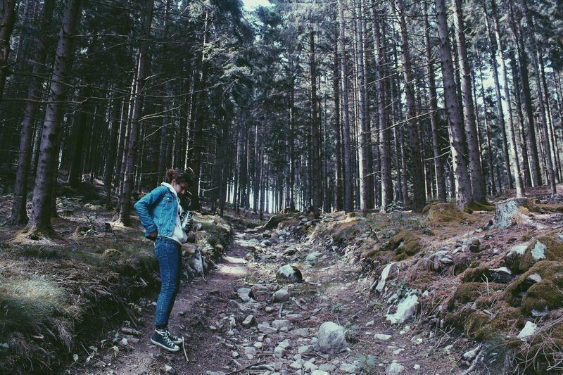 Wanderlust Trip