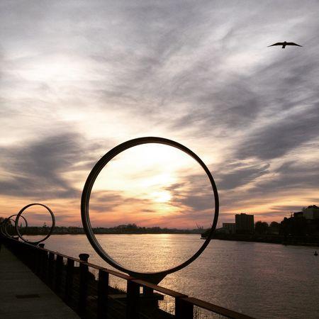 Sun Sunset Sun_collection