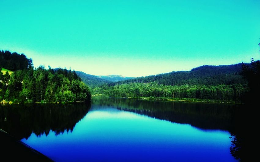 Reflection Water Blue Nature Lake Tree Scenics Landscape Forest Beauty In Nature Tranquility No People Outdoors Mountain Clear Sky Sky Day Natural Parkland wisla Beauty In Nature Green Color Tree Leaf River Nature water