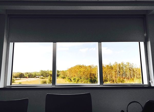 👋🏼Meeting Adjourned 👋🏼 Window Glass - Material Tree Transparent No People Day Sky Indoors  Nature Architecture Fresh On Eyeem  EyeEm Best Shots Nature Tree Looking Through The Window Glass Explore Florodian Florida Life Florida Nature Meeting Room BoardRoom Empty Chair