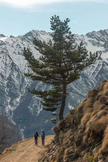 Rear view of people walking on mountain