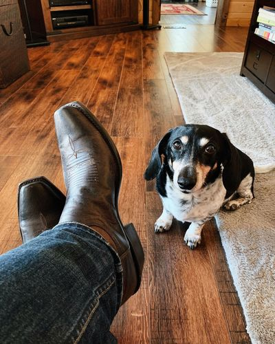 coop, telling me these boots are made for dog walking. Wasatch Mountains Wasatch County Utah Low Section Human Body Part Body Part Human Leg Real People Indoors  One Person