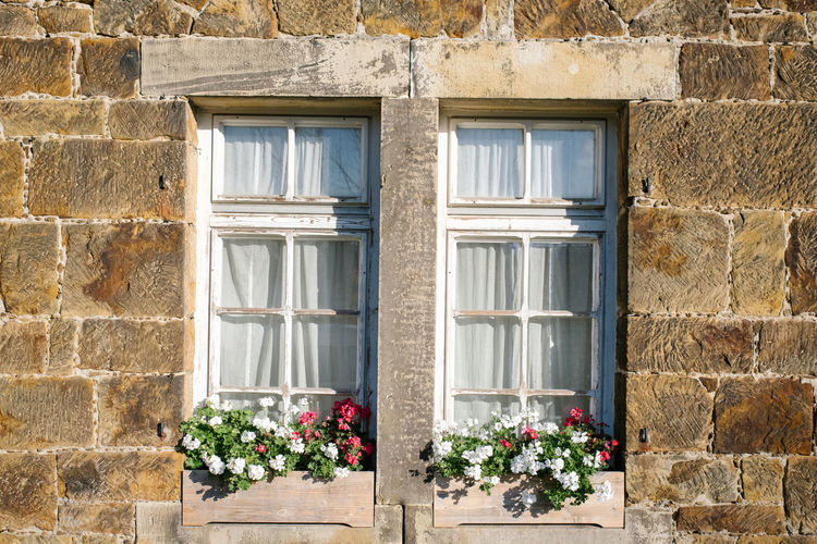 Window Architecture Building Exterior Built Structure Flower Flowering Plant No People Building Plant Day Glass - Material Wall - Building Feature Wall Nature Outdoors House Closed Brick Residential District Brick Wall Window Frame Window Box Flower Pot