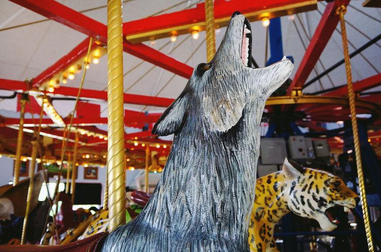 Carousel with unique look Animal Carousel Cheetah Enjoying Life Excitement Fun Indoors  Kansas Kids Relaxing Ride USA Relaxing Time Howl
