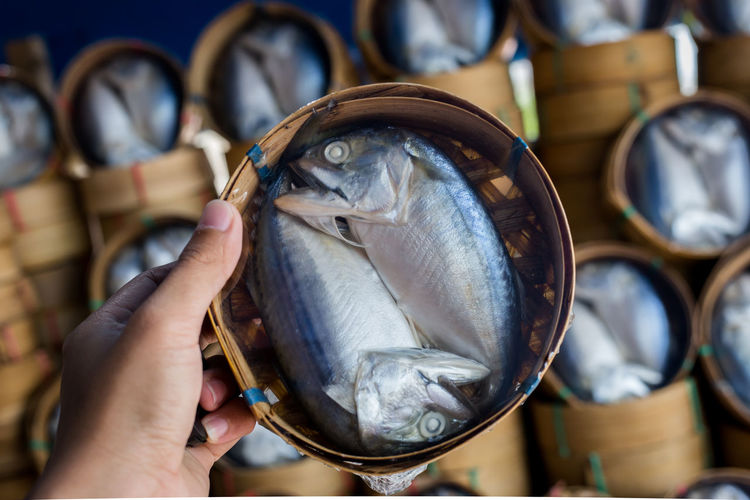 Cropped hand carrying raw seafood in container