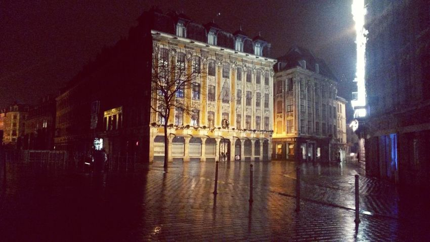 Lille By Night Nobody