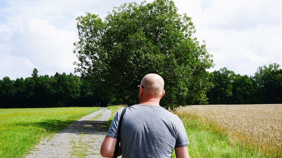 Rear View Of Bald Man On Field Against Sky During Sunny Day