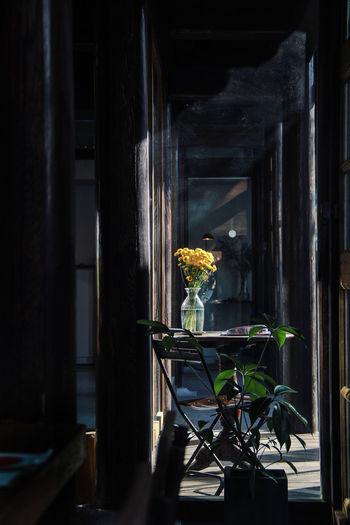 silence. Light NG先生 StillLifePhotography Architecture Day Flower Growth Home Interior Indoors  Light And Shadow Nature No People Plant Silence Still Life Vase Window 光影 安靜 室內 寂 小黃花 EyeEm Ready