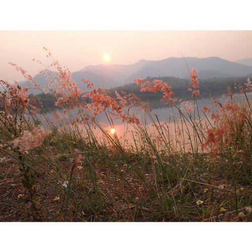 รอตะวันลับขอบฟ้า Sunset Sun Pretty Beautiful red orange pink sky nature clouds horizon gorgeous warm view