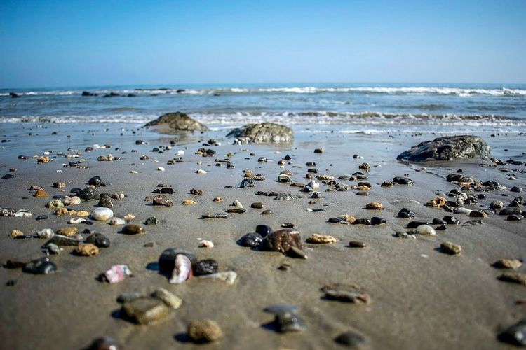 Stones in the sand Colors Beach Sea Water Beach Land Horizon Over Water Sky Beauty In Nature Nature Horizon Sand Motion Scenics - Nature Wave Day No People Rock Tranquil Scene Pebble Stone