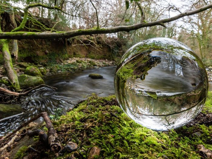 Experimenting with my new lensball. River Plym River Riverside Long Exposure Lensball Lensball Photography Backwaters Rotation Landscape Landscape_Collection Landscape_photography Something Different Experimental Photography Nature Nature_collection Nature Photography EyeEm Nature Lover Eye4photography  EyeEm Best Shots Tree Water Branch Reflection Crystal Ball Countryside Moss Woods Green Calm Greenery