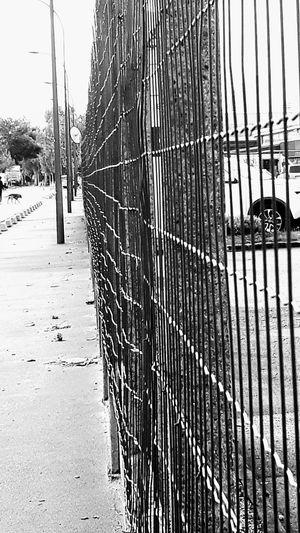 Walking In The Street On My Way To Work Street Fence Perspective No People Blackandwhite Photography Eye4photography  EyeEm Gallery The Week On EyeEm