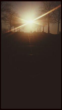 Twilight Shadows