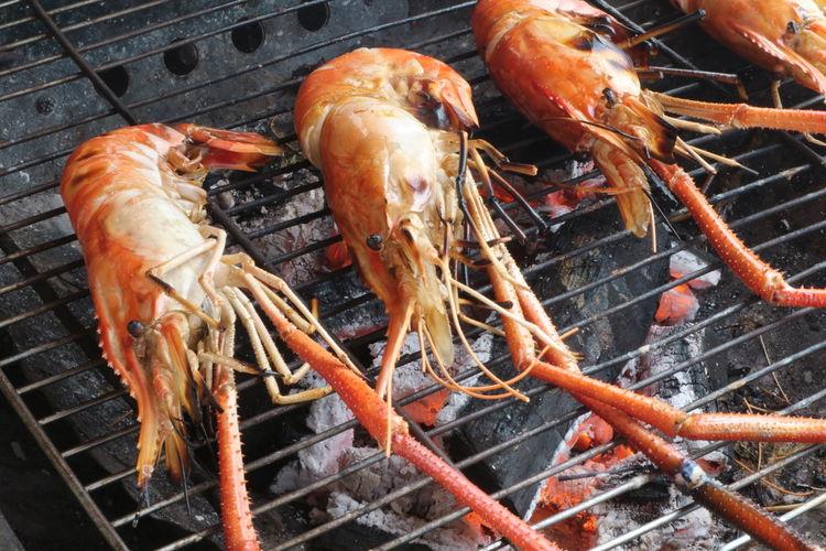 Shrimps Food
