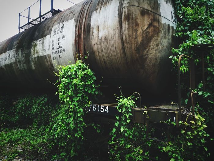 View of abandoned train