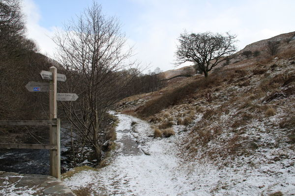 Cumbria Lake District Walking Around Bare Tree Beauty In Nature Cloud - Sky Cold Temperature Day Grassmere Hikingadventures Nature No People Outdoors Rydal Signpost Sky Snow Tree Winter