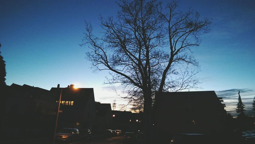 Sunset January 2015 Relaxing Taking Photos First Eyeem Photo
