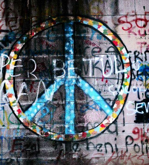 Ankara Kuğulu Park Duvaryazısı Freedom özgürlük Simge Işaret