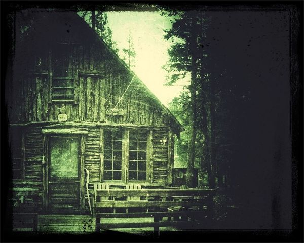 Vintage Cabin in the Woods