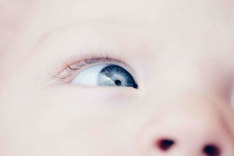 Human Eye Eyelash Eyesight Iris - Eye Eyeball Close-up Sensory Perception People Pastel Colors Soft Delicate Innocence Babies Only Boy Baby Blue Eyes Human Face Childhood Cute Child Macro