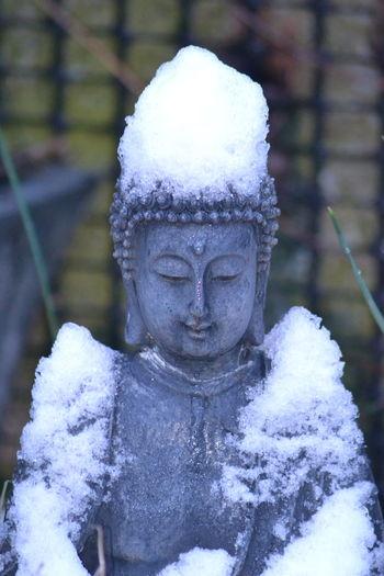 Snowy Day ❄ Buddha MyBackGarden