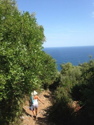 Trekking Hillside By The Beach Summertime One Woman Walking Alone... The Purist (no Edit, No Filter) @ Damouchari in east Pelion, Greece Alternative Fitness An Eye For Travel Summer Exploratorium