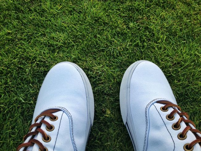 Snickers White And Brown Polo Ralph Lauren Pattern, Texture, Shape And Form Green Grass 🌱 Fashion Photography Style ✌ In Dubai Perspective Focus Pointandshoot Vision Is Seeing Beyond What's In Front Of You Point Of View Design Shoes For The Day Walking Around Polo Leather Laces