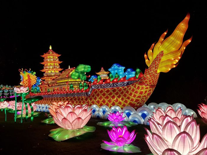 Dragon Taking Photos Zoo Antwerpen China Light Festival Multi Colored Celebration
