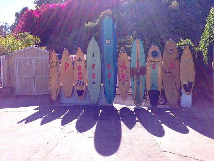 Malibu Paradise Cove California Surfboards Surf's Up