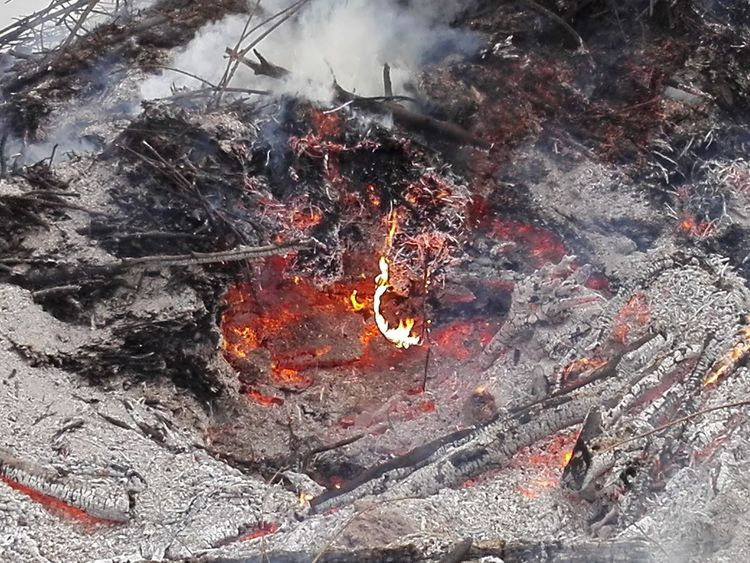Heat - Temperature Outdoors Day Lava No People Burning Nature Tree Close-up Firewood Burning Wood