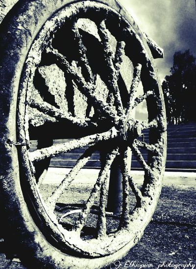 Z wheel Love Photography💗💗💗📷 Check This Out Ethiopian Photography