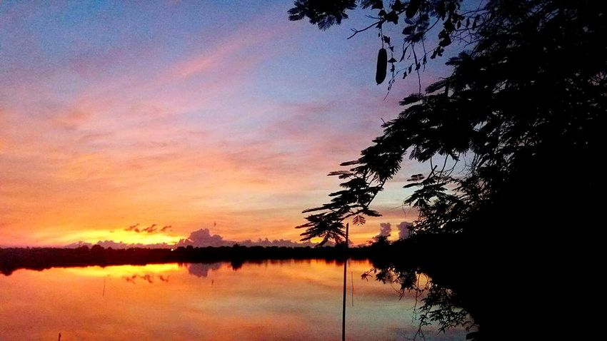 First Eyeem Photo Nature Orange Color Morning Water Stories Thailand Samutprakarn In Thailand Sky Nature Beauty Tree Sky And Trees Trees And Sky TreesAndWater Waterandsky