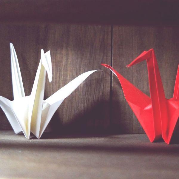 Folded paper crane Folded Paper Crane ツル Tsuru Origami Art Origamicrane Origami Craft Origami Close-up
