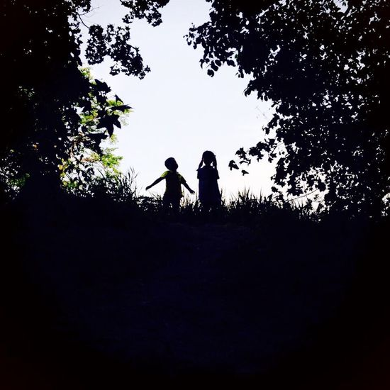 Silhouette Two People Tree Real People Low Angle View Togetherness Men Day Outdoors Sky Nature People