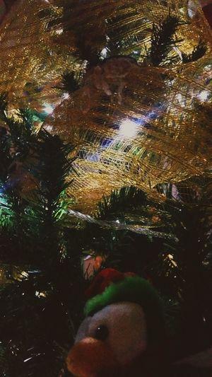 Christmas Tree Goldenchristmas