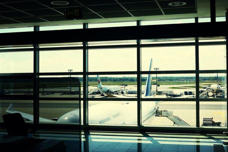 Frankfurt Airport At The Terminal