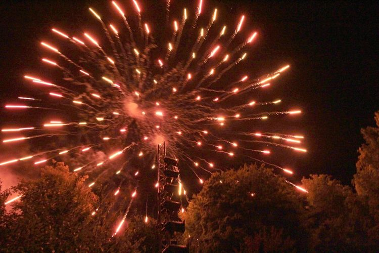 Feuerwerk im Park Illuminated Night Celebration Firework Motion Glowing Long Exposure Firework Display Event Arts Culture And Entertainment No People Exploding Nature Light Sky Low Angle View Outdoors Blurred Motion Firework - Man Made Object Celebration Event Sparks