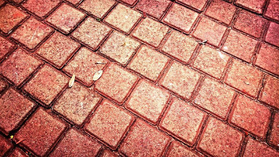 Bricks by P4lsoe
