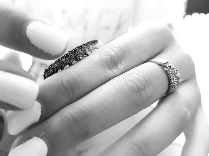 M's Hand/Hands... for Bnw_friday_eyeemchallenge Fingers Ring Caterpillar Insect Paparazzi Small And Swift Macro Macro World Close-up Body Part Part Of A Whole Manicurednails Bnw Black And White Showcase July Monochrome Photography Maximum Closeness Women Around The World The Great Outdoors - 2017 EyeEm Awards Live For The Story Perspectives On Nature Black And White Friday