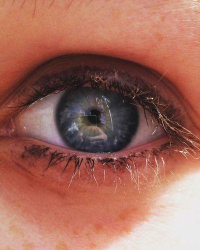 Maximum Closeness eye Human Eye Eyelash Real People Human Body Part Close-up Sensory Perception Eyeball Macro Iris - Eye Eyesight One Person Portrait Eyebrow Outdoors People Day Adult