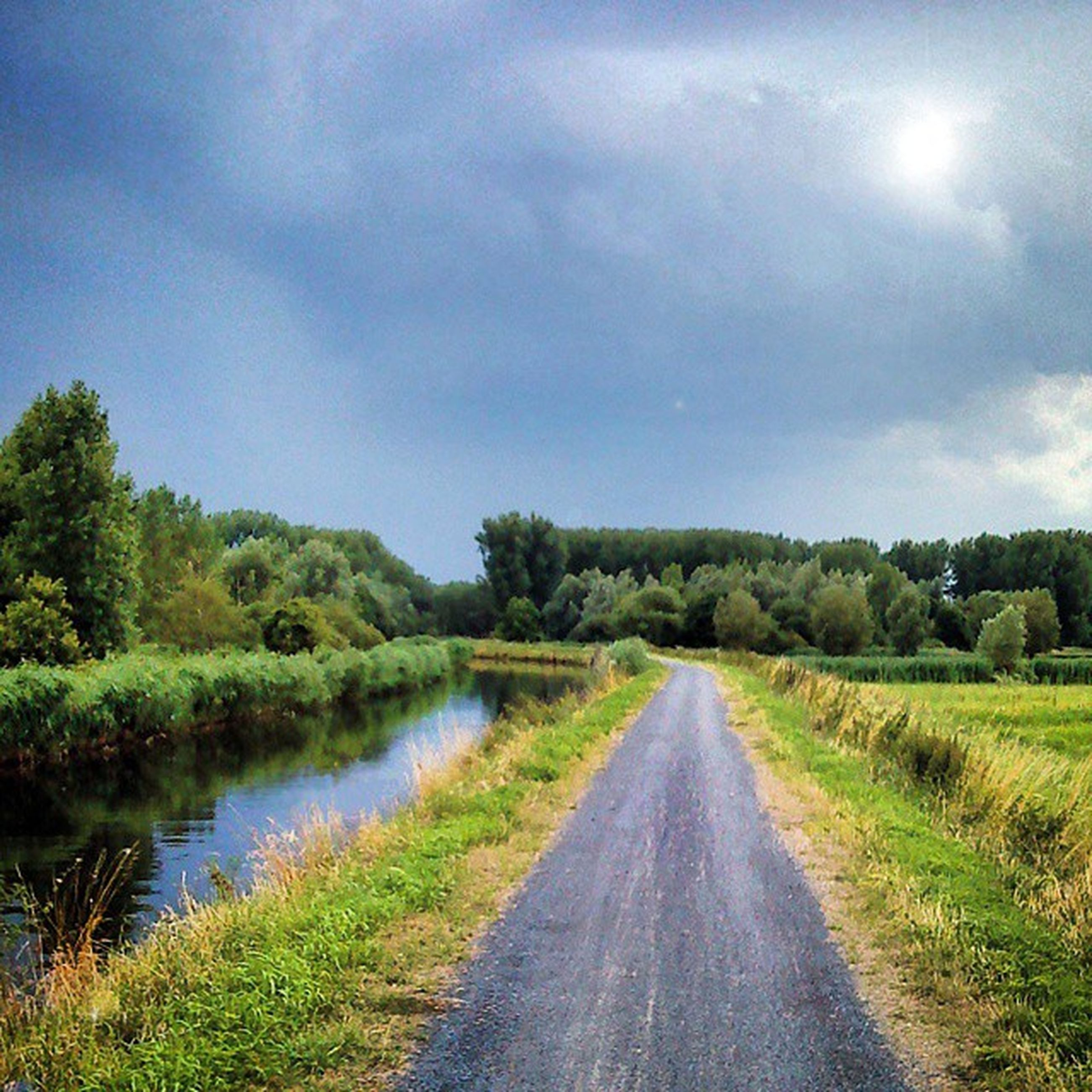 sky, the way forward, grass, tranquility, tranquil scene, diminishing perspective, tree, cloud - sky, landscape, nature, water, field, scenics, beauty in nature, growth, vanishing point, cloud, plant, road, grassy