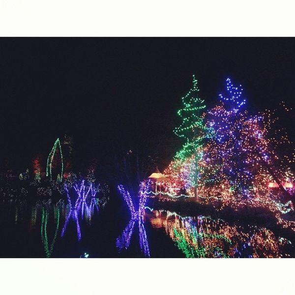Festival of Lights Vancouver Garden