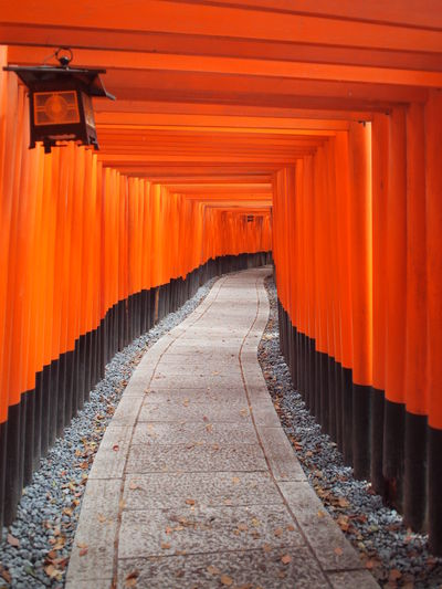 Footpath Amidst Torii Gates At Fushimi Inari Shrine