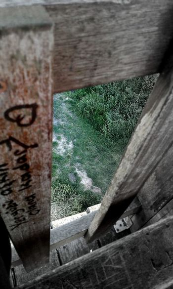 #distance #forest #green #nice #TURKEY/Kocaeli #Wood