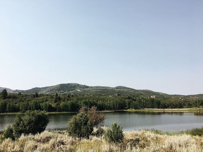 the eastern side of timber lakes. Wasatch County. Sunday run. Utah Wasatch Mountains Wasatch County Sky Water Plant Tree Tranquility Beauty In Nature Copy Space