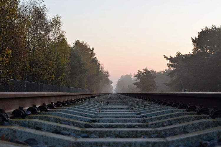 Low Angle View Of Railroad Tracks In The Fog