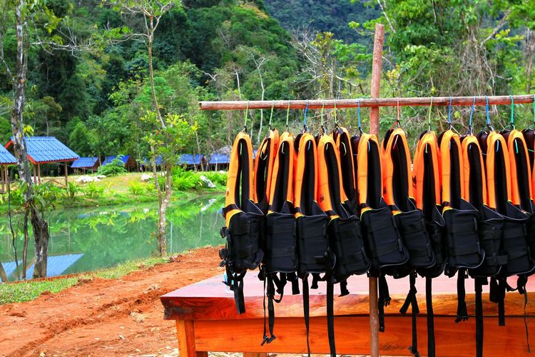 Many orange life jackets for rent near the lake National Park Orange Riverside Travel Vacations Activity Belt  Black Clothing Floating Hanging Lake Life Jacket Many Nature Outdoors Protection Rental Rescue Sport Summer Tree Vest Water