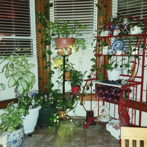 Home Is Where The Art Is Colour Of Life Illuminated Light Wine Rack,interior Design, Interior Decorating, Plants, Houseplants, Knick Knacks,,treasures